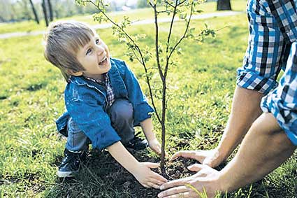 A young boy planting a tree. There are the arms of an adult in the picture helping him.